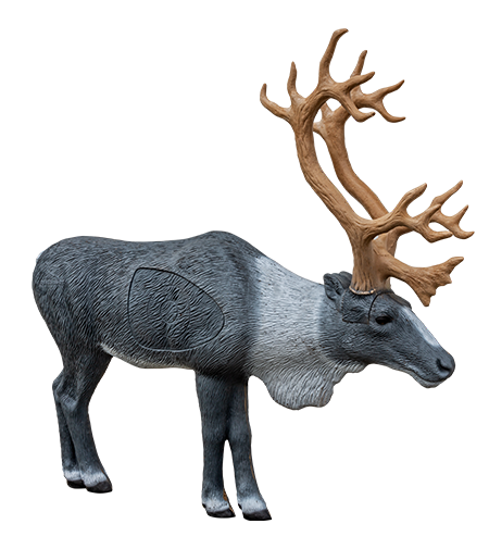 1/3 Scale Woodland Caribou